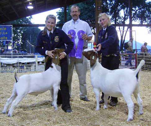 Home - CHILDERS SHOW GOATS